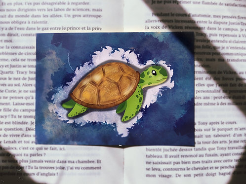 Carte églantine la tortue