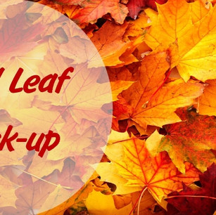 Fall-Leaf-Collection.jpg