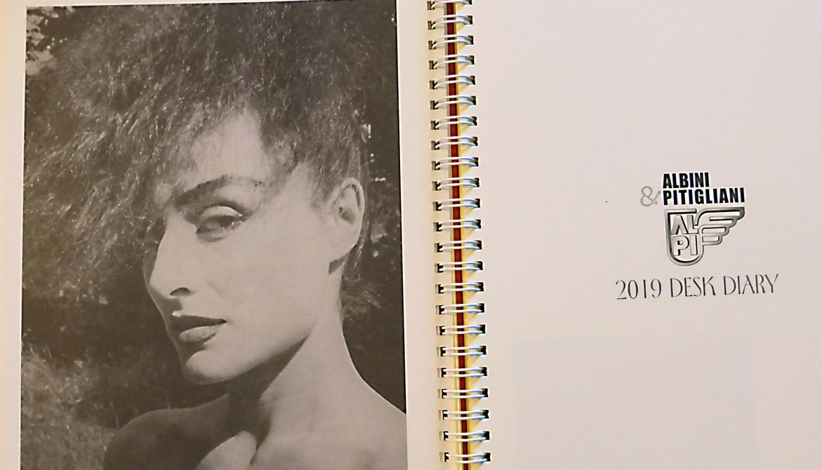 Antonia Fontana 2019 DESK DIARY