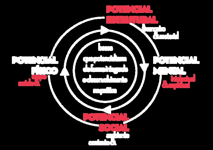 potencial_ação1BRANCO_2-01.png
