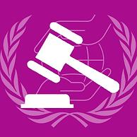 human rights council.png