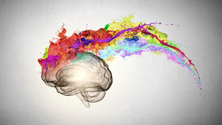 Why Brain Development is so Important