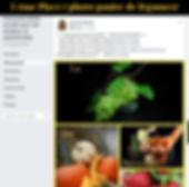 concours photo legume.jpg