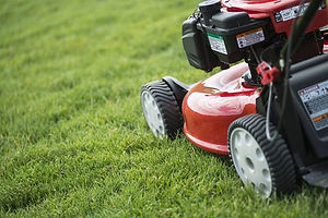 young-man-mowing-the-grass-on-a-property