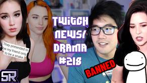 IndieFoxx Vs Amouranth, Kaceytron Cancelled, Ludwig Bans Dream, NigaHiga - Twitch Drama/News #218