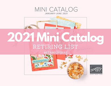 2020 Mini Catalog.png