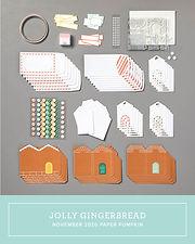 November Paper Pumpkin Kit Case Insert