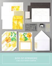 June Paper Pumpkin Kit Case Insert