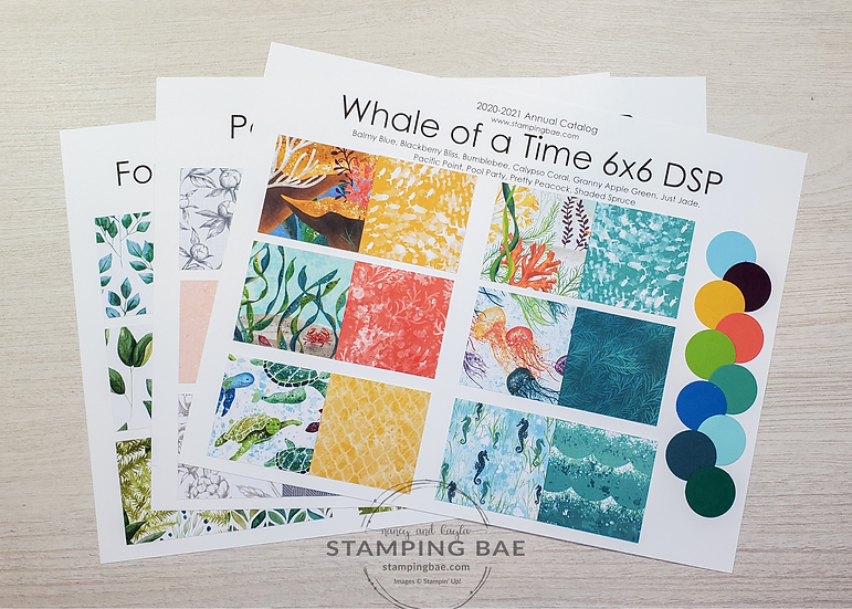 2020-21 Annual Catalog DSP Sampler