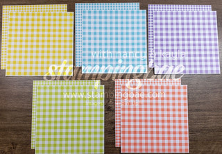 Gingham Gala 6×6 Designer Series Paper (10 double-sided sheets sized at 6×6 – 2 of each design)