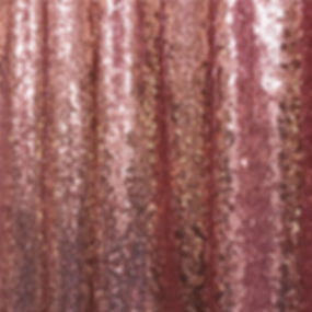 Blush Sequin.jpg