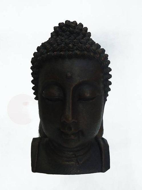 Βούδας Υγείας (κεφάλι)