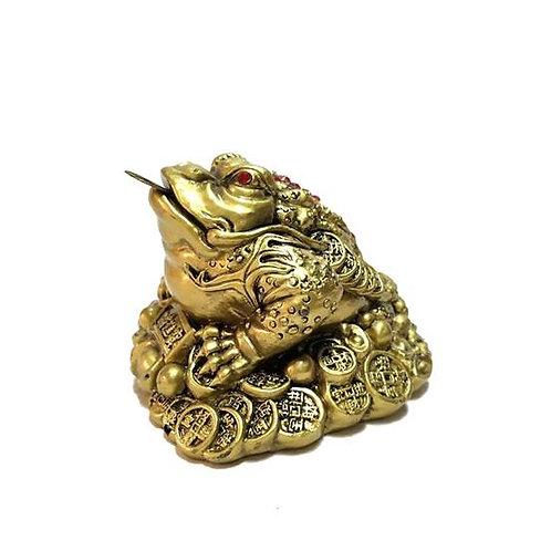 Βάτραχoς της Αφθονίας