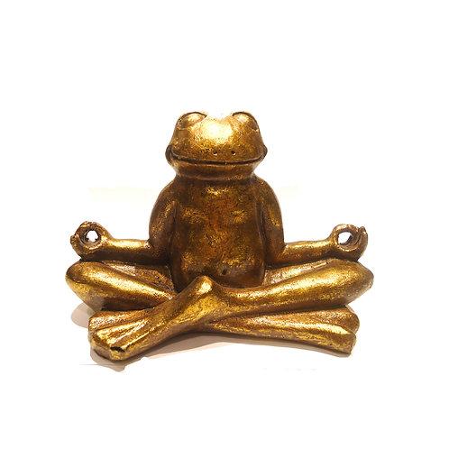 Βάτραχος σε στάση yoga (2)