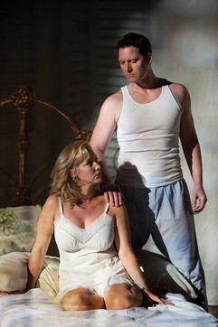 Cat on A Hot Tin Rooof-Williams