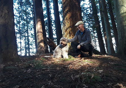 Dog and the owner in the woods