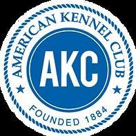 Lagotto Breeder - American Kennel Club