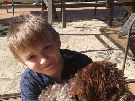 Lagotto's are great with kids
