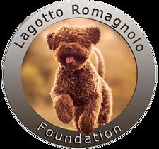 Lagotto Breeder - Lagotto Romagnolo Foundation