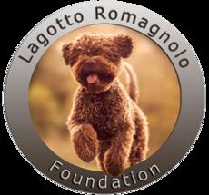 Lagotto Breedr - Lagotto Romagnolo Foundation