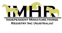 IMHR Logo Text Gold Horses (Small).png