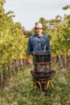 Ralf Wassmann passionated biodynamic winegrower