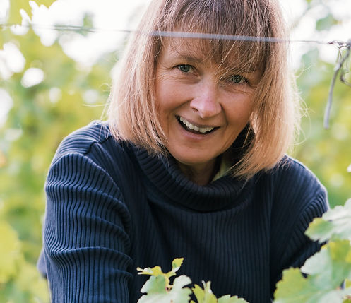 handcrafted wines, Susann Hanauer, Handlese, wine without additives