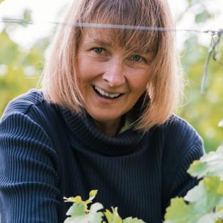 Weinlese, grape harvest, ehrlicher Wein, biodynamischer Weinbau Wassmann