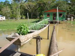 Desenvolvimento Rural em Comunidades Ribeirinhas (DRS)