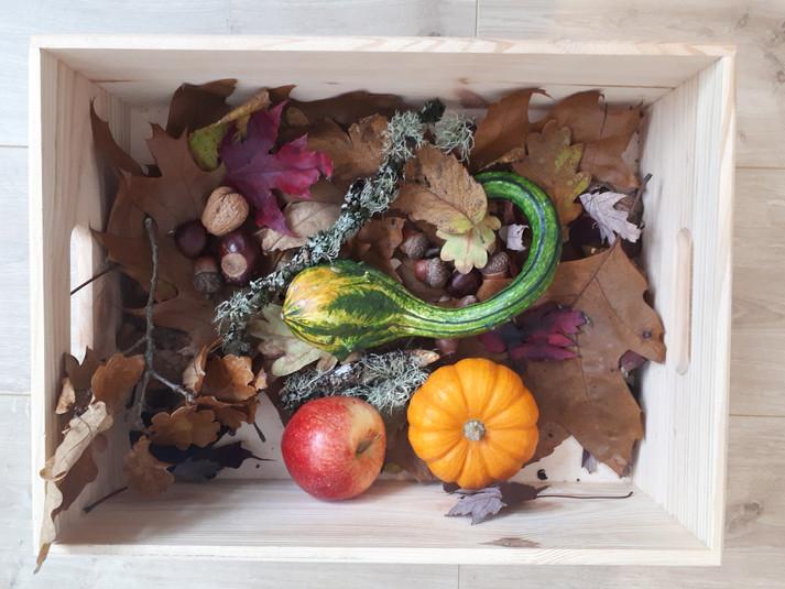 Atelier des saisons