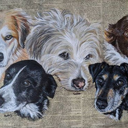 Five loved dogs...3 deceased and two sti