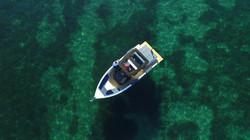 De Antonio Yachts_D28 Open_27