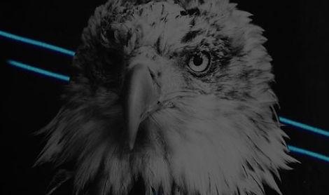 EagleBet Banner.JPG