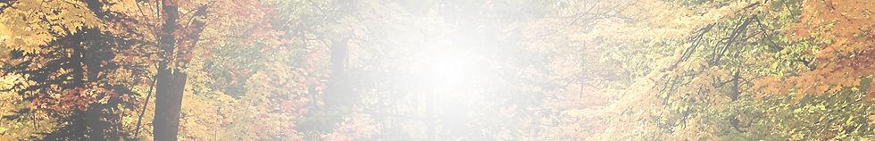 TCS.Fall.Banner.jpg