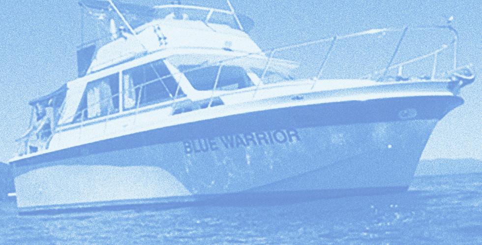 Blue-Warrior-PaleBlue.jpg