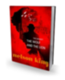 3d book cover by author Nelson King