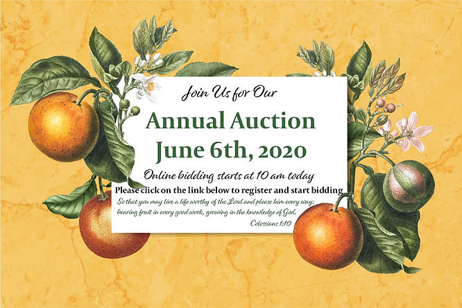 Auction 2020 today-01.jpg