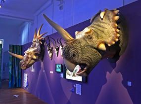 Centrosaurus und Styracosaurus Trophy