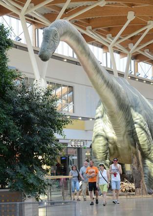 Seismosaurus.bea.jpg