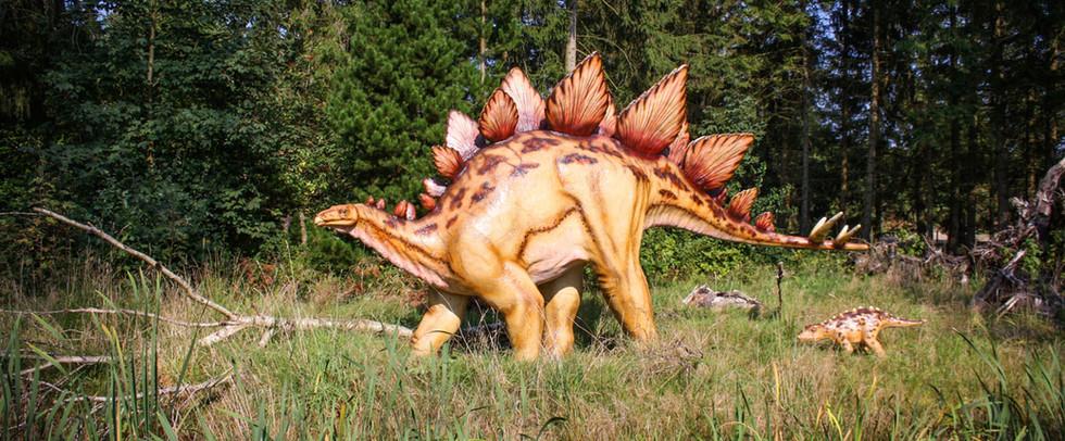Stegosaurus-(2).jpg