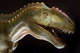 Allosaurus Jungtier