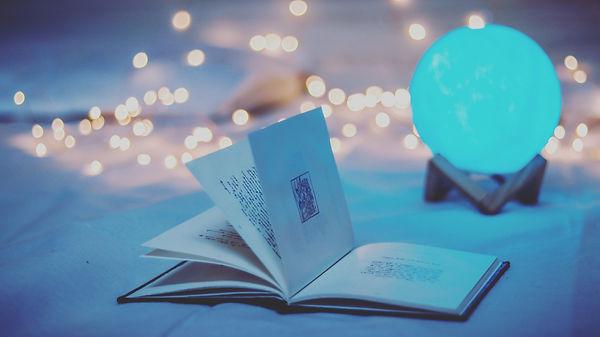 Boule et livre.jpg