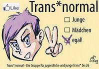 Transnormal Flyer 001.jpg