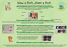 Grow a fruit from a fruit.jpg