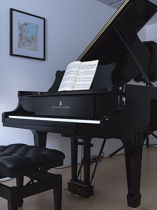 Pass Play with my Steinway