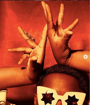 5 séances (Voguing ou Waacking ou Afro House)