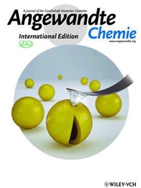 Angewandte Chemie 2010.jpg