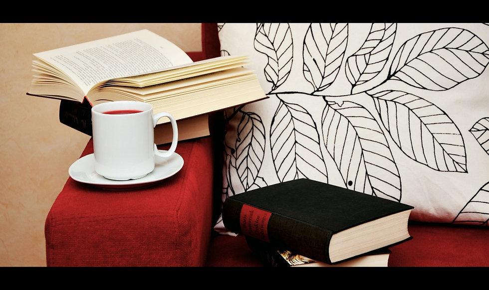 Libri sul divano dei pigri, si possono trovarerecensioni, pagine d'autore, incipit, pagine di autori sconosciuti, poesie, citazioni, magazine