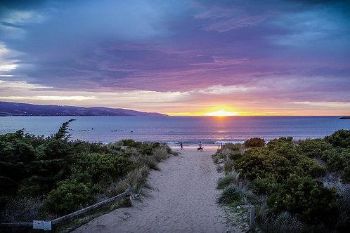 Surf Club Sunrise