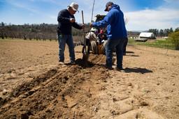 Farming by the Barn